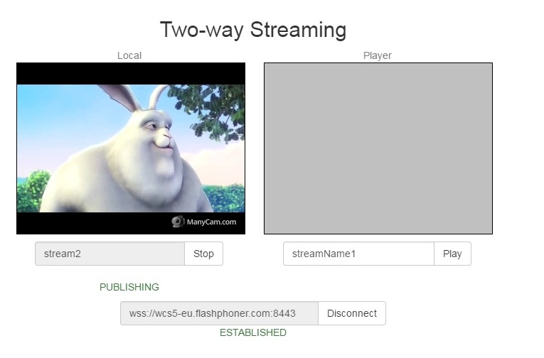 Testing WebRTC iOS SDK with streaming video and calls   Streaming
