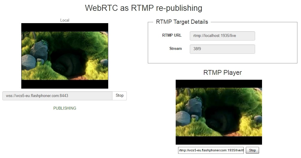 webrtc-rtmp-republish-working-demo-testing
