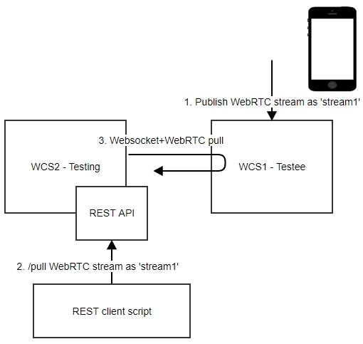 Server-to-Server WebRTC | Streaming Video WebRTC server and SIP