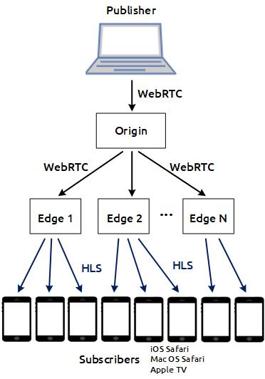 scheme_cdn_hls_WebRTC_HLS_WCS_RTSP_RTMP_iOS_browser_MacOS_CDN