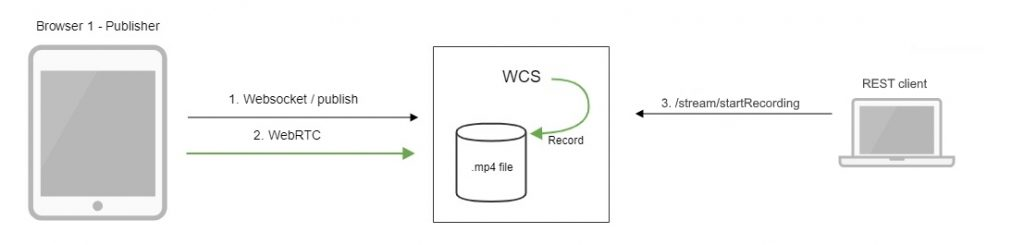 stream_video_rec_WebRTC_Android_iOS_SDK_API_WCS_browser_RTMP_RTSP_VOD_SIP_RTP