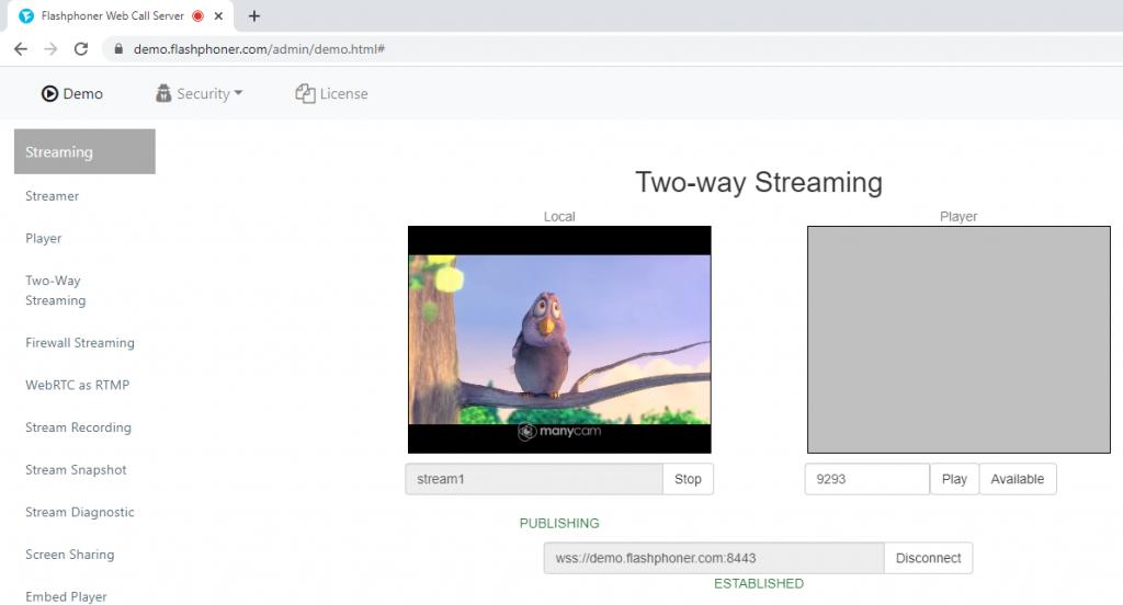 WCS_publishing_stream_broadcasting_safari_ios_Websocket_Canvas_WSPlayer