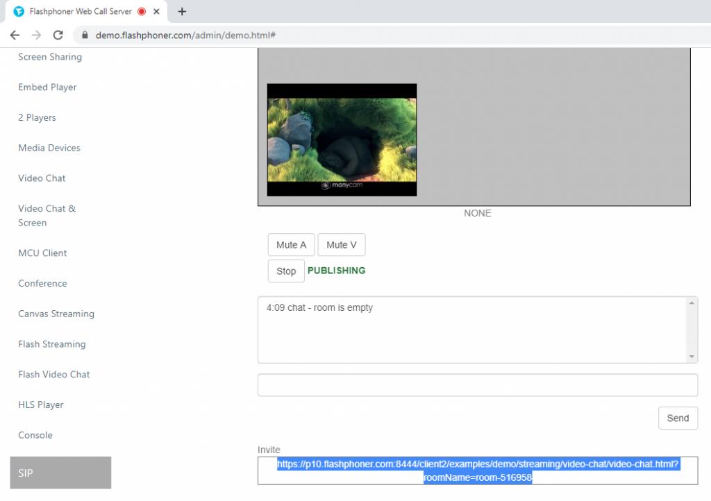 copy_invite_video_chat_WebSocket_API_WCS.png
