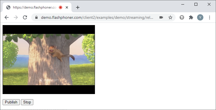 release_media_devices_publish_Browser_WCS_WebRTC_RTMP_codec_fps_camera_bitrate