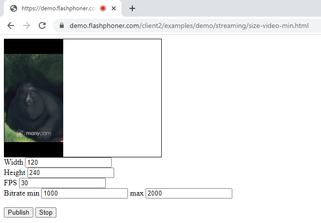 size_video_page_publish_media_devices_Browser_WCS_WebRTC_RTMP_codec_fps_camera_bitrate